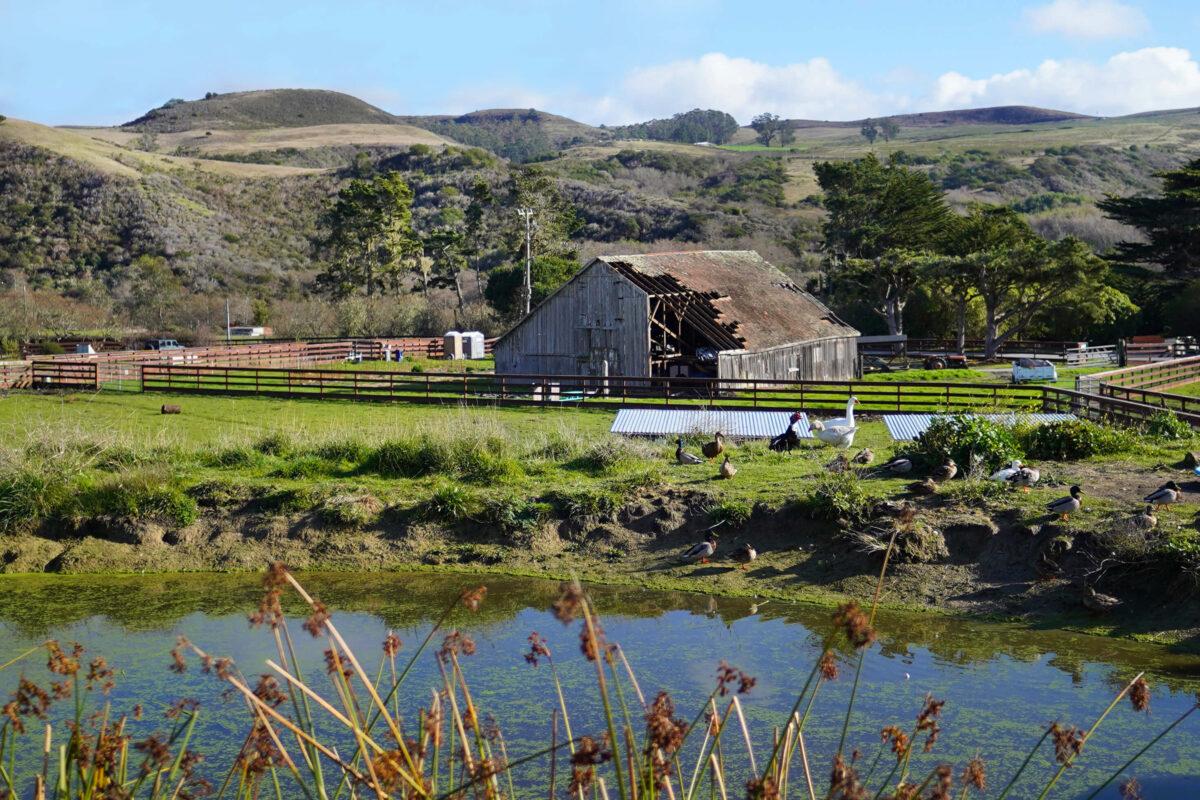 Sweet Farm Barn